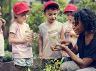 Edible Schoolyard NYC: NYC Food Based Community Organization Spotlight