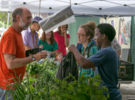South Bronx Farmers' Market: NYC Food Based Community Organization Spotlight