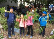 Make the Road New York: NYC Food Based Community Organization Spotlight