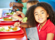SMART Schools, Chicago: Urban Food Policy Snapshot