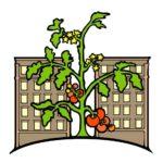 Washington Heights/Inwood Food Council