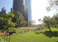 Want to Get Your Hands Dirty? Visit a NYC Urban Farm This Summer.