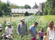 Stone Barns Center for Food and Agriculture is Transforming the Way America Eats and Farms