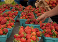 NYC Food by the Numbers: Farmers' Markets