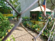 NYC Food by the Numbers: Urban Agriculture