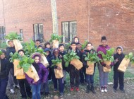 Concrete Safaris: NYC Food Based Community Organization Spotlight