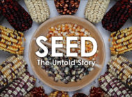 Interview with the Directors of SEED: The Untold Story