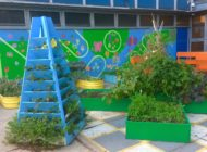 Are School Gardens Here to Stay?