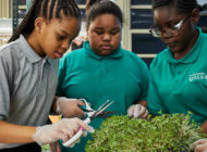 Teens for Food Justice: NYC Food Based Community Organization Spotlight