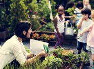 NYC School Gardens in Every Borough: Staten Island