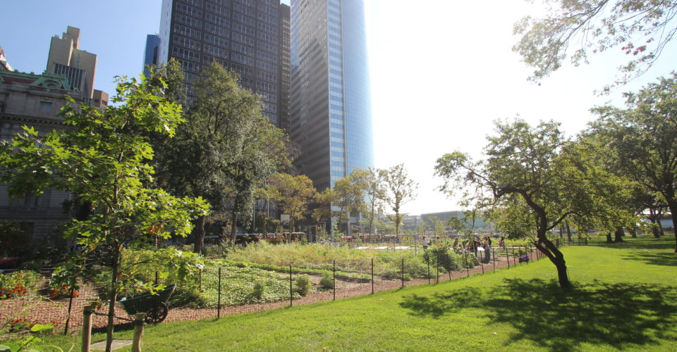 Want to Get Your Hands Dirty? Visit a NYC Urban Farm This
