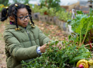 Harlem Grown: Sowing the Seeds of Hope in Young Children