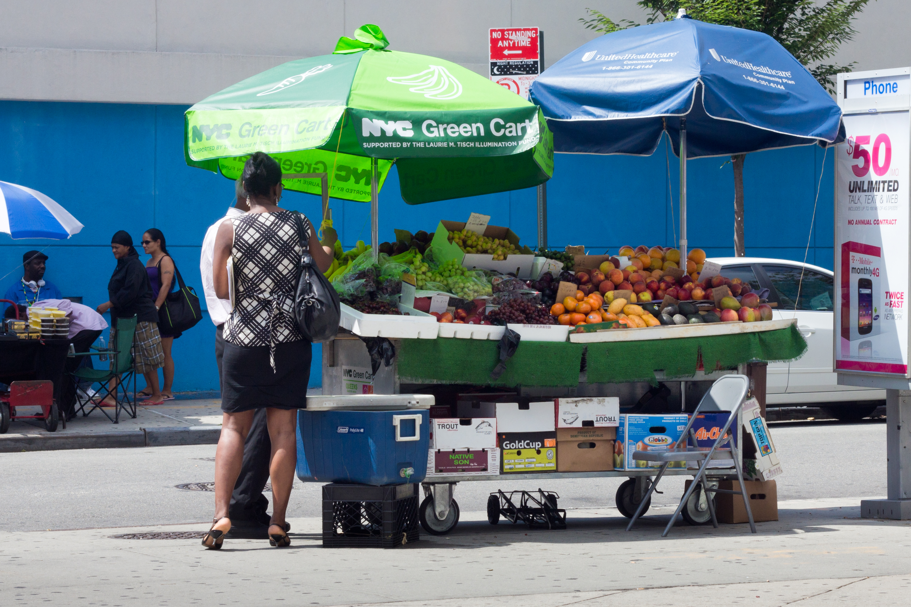 Food Policy and Programs in NYC—A Primer for Incoming