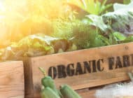 Is the Organic Label as Valuable as You Thought?