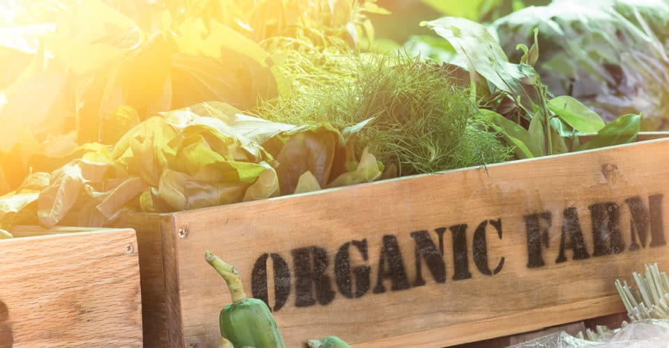 Is the Organic Label as Valuable as You Thought? - NYC Food Policy