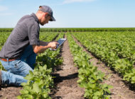 The 2018 Farm Bill, Part Two: Conservation Efforts Among Farmers