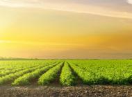 The 2018 Farm Bill, Part Seven: Conservation Beyond Cultivable Lands