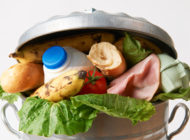 Food and Tech: Solutions to Recover and Redistribute Food Waste