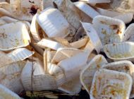 Maine Bans Styrofoam Food Containers