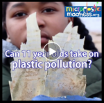 Microplastic Madness - the movie