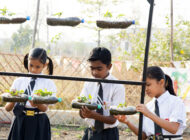 All Schools in India to have Nutrition (Kitchen) Gardens