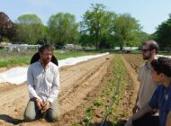 Pro Bono Legal Services for Farmers and Food Businesses: Pace Food and Beverage Law Clinic